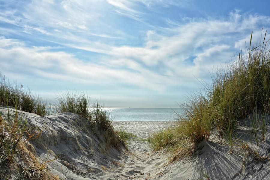 reaching the Baltic Sea Photograph