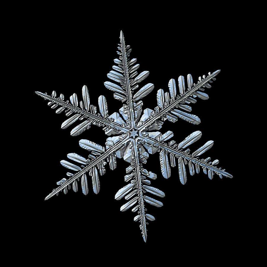 Real Snowflake 2016-01-09_2b Photograph