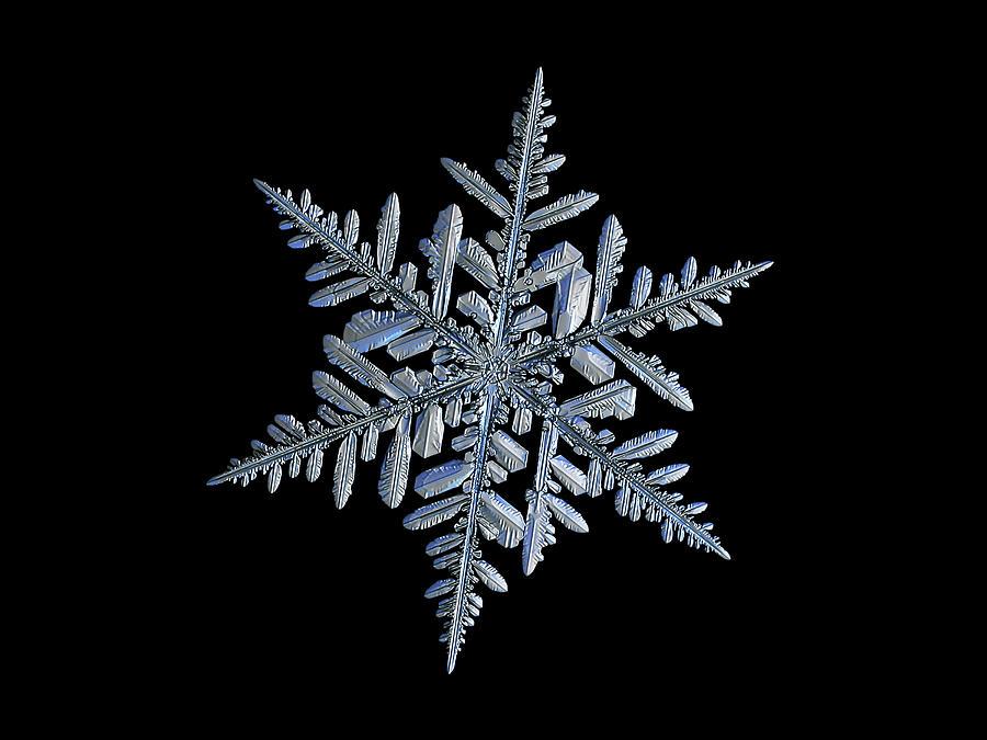 Real Snowflake 2018-12-18_3 Photograph