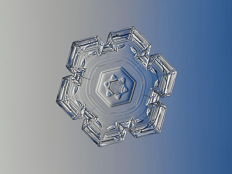 Real Snowflake 2019-01-10 3 Photograph