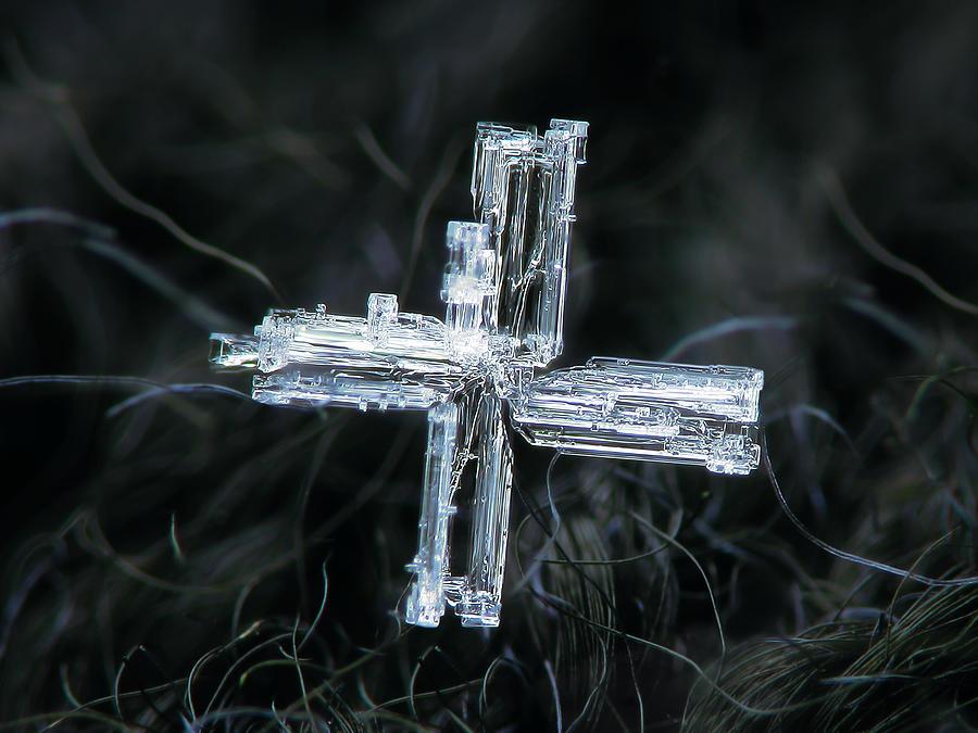Real Snowflake 2020-01-28_2 Photograph