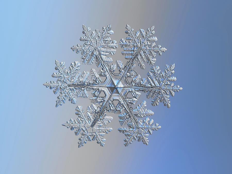 Real Snowflake 2021-02-11_1 Photograph