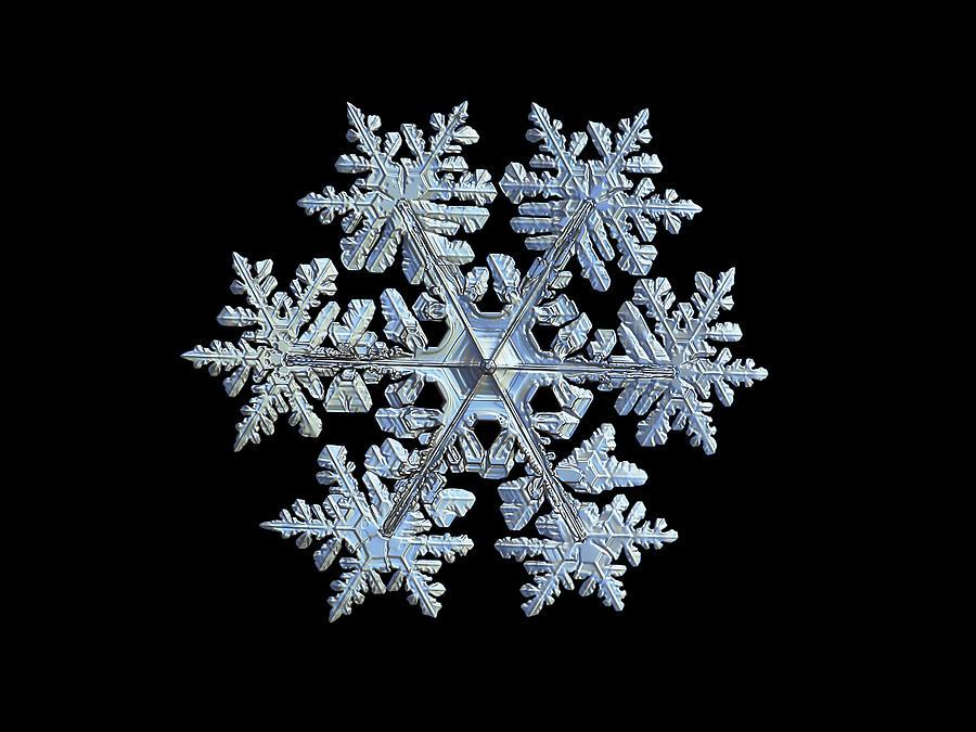 Real Snowflake 2021-02-11_1b Photograph