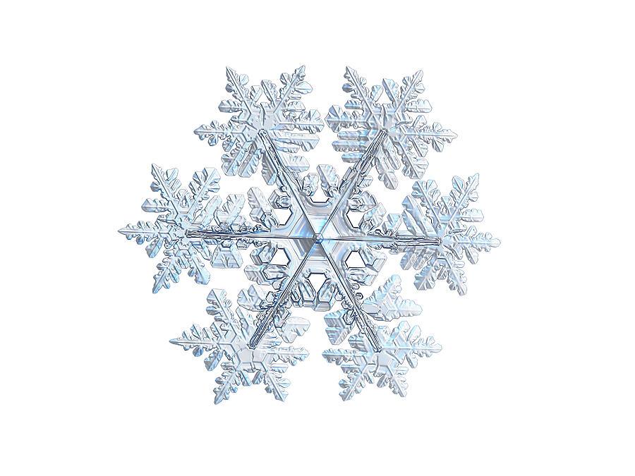Real Snowflake 2021-02-11_1w Photograph