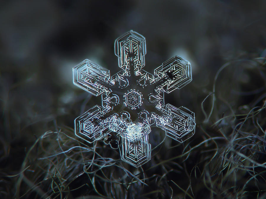 Real Snowflake - Alioth New Photograph