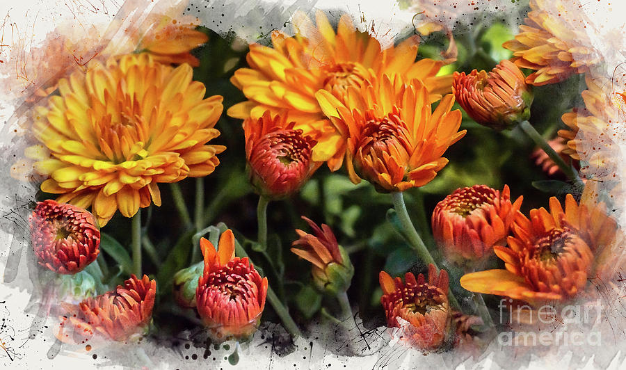 Red and Golden Mums by Susan Warren