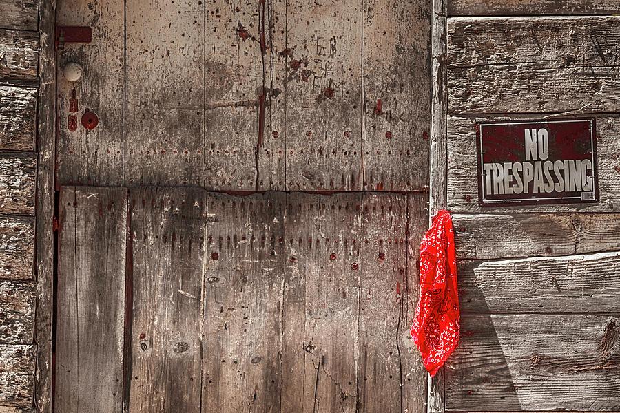 Red Bandana Photograph