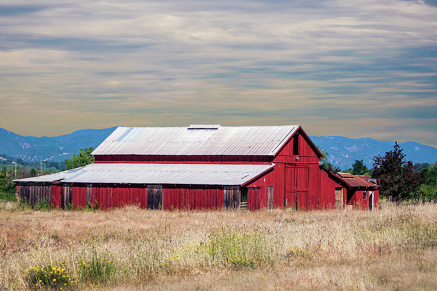 Red Barn In Lake County by William Havle
