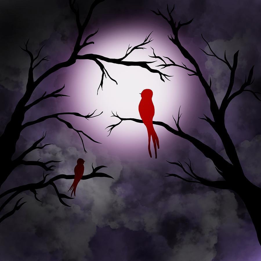 Red cardinal at night by Patricia Piotrak