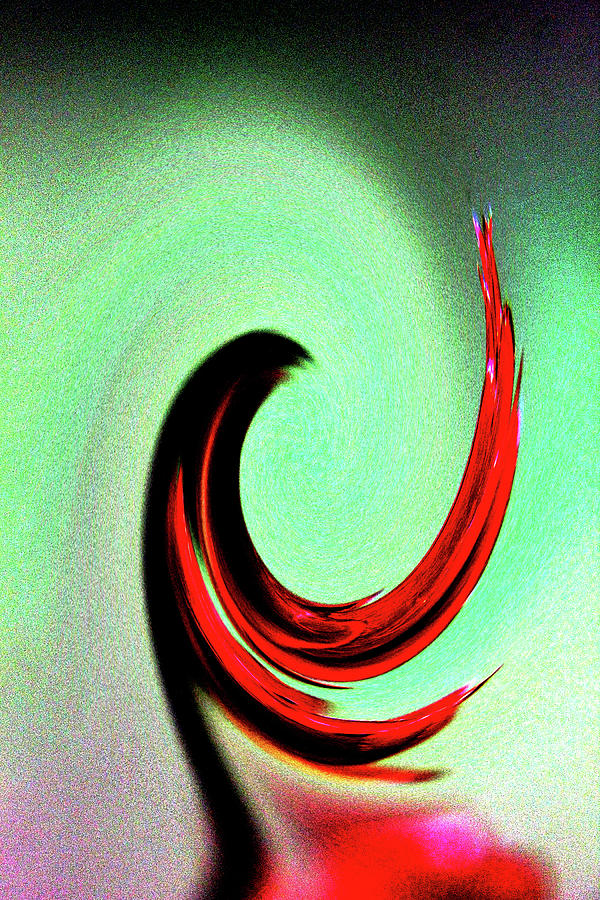 Abstract Photograph - Red Crepe Twirl by Holly Morris