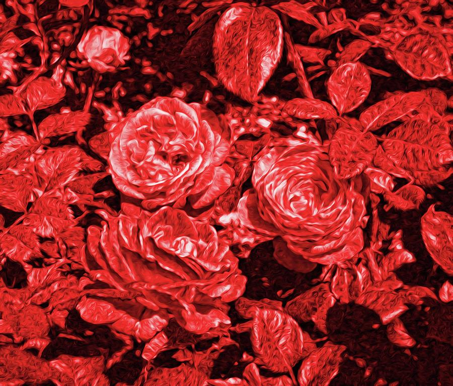 Red Roses Abstract 2 Digital Art