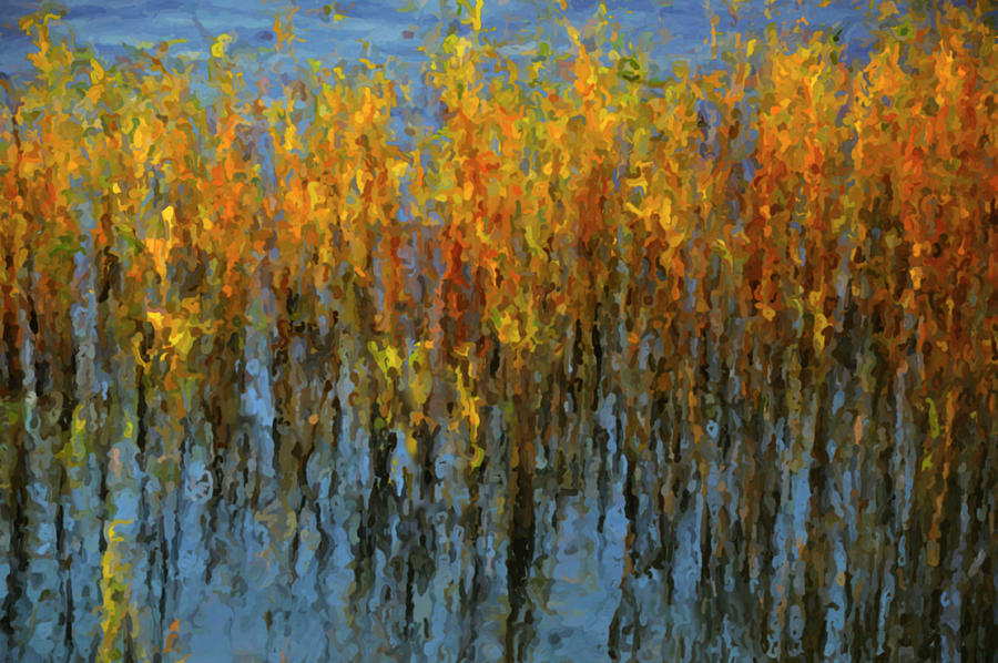 Reeds In A Lake Mixed Media