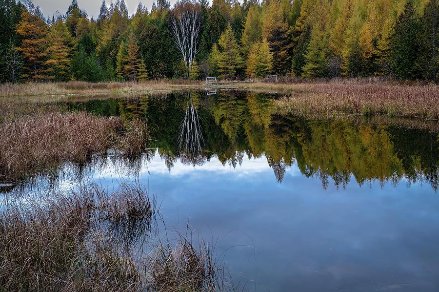 Reflection by David Heilman