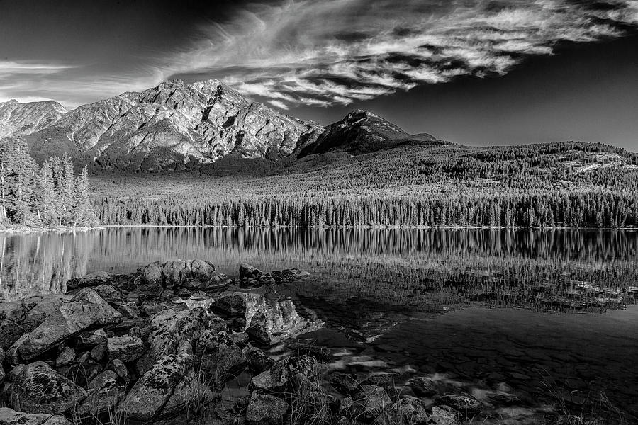 Reflections in Black and White by Ronald Santini