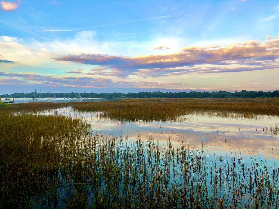 Reflections, Landscape, Marsh Grass Photograph by Michael Stothard