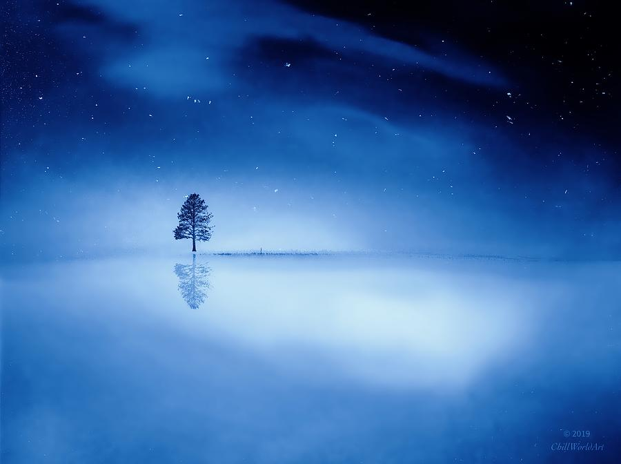 Reflections Of Winter Photograph