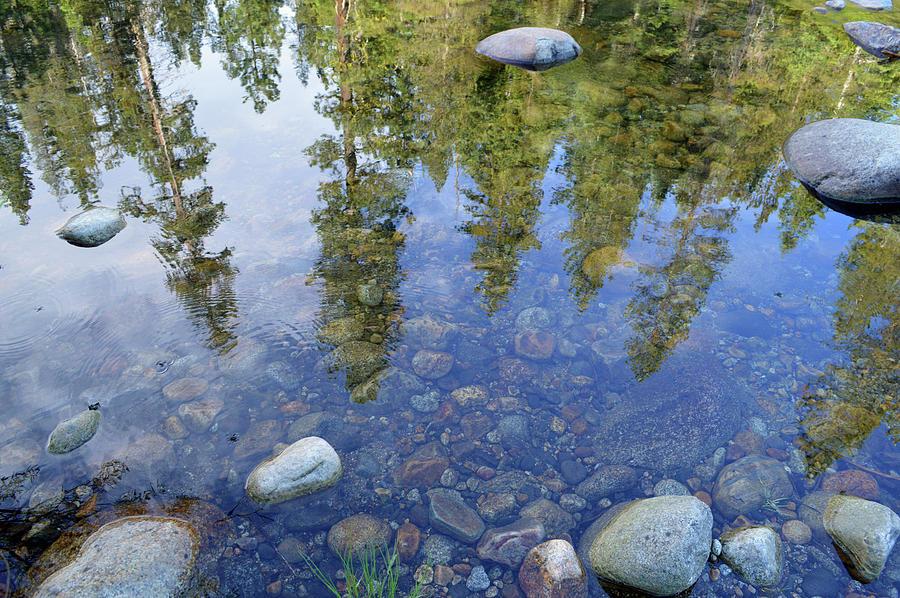 Reflective Dinkey Creek Photograph