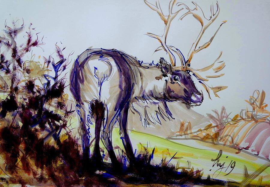 Reindeer Watercolor Painting by Mike Jory
