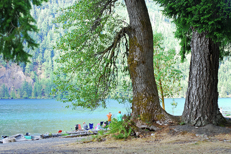 Relaxing At Lake Crescent. Olympic National Park Photograph