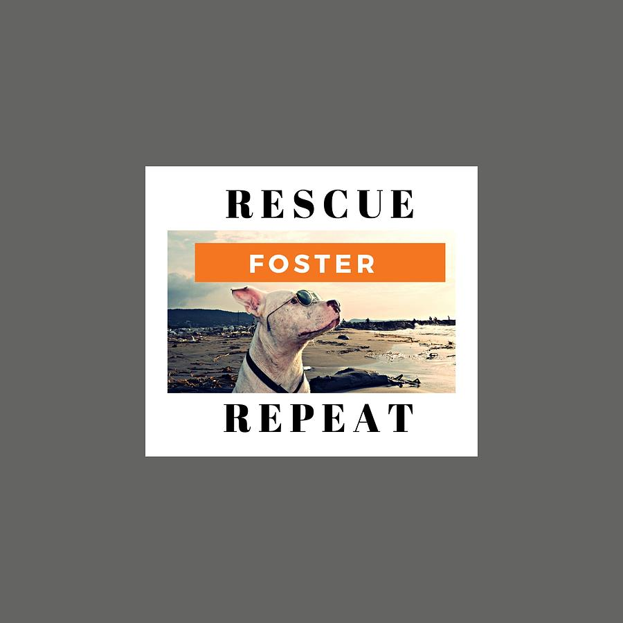 Animal Rescue Digital Art - Rescue Foster by Roatan Animal Support