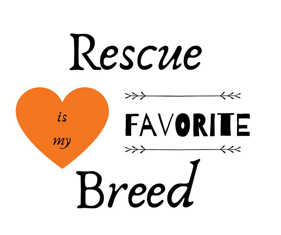 Animal Rescue Digital Art - Rescue Love by Roatan Animal Support