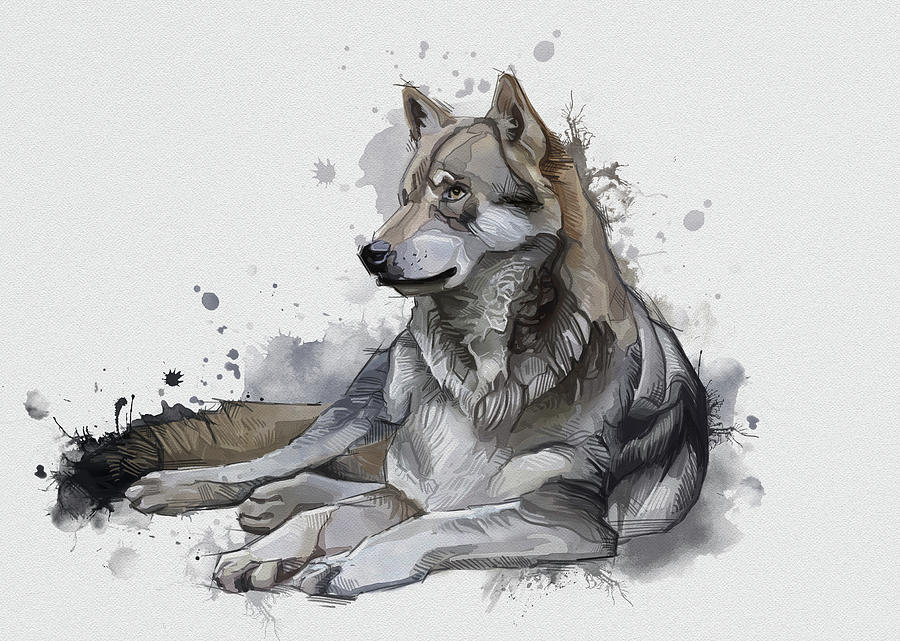 Resting Wolf Vintage Digital Art