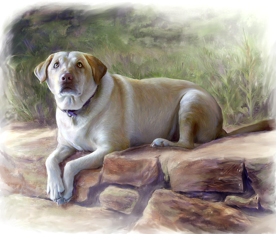 Dog Painting - Restrained Energy- Yellow Labrador Retriever Portrait by Connie Moses