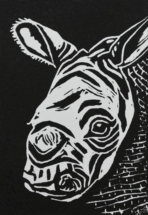 Baby Black Rhino Relief