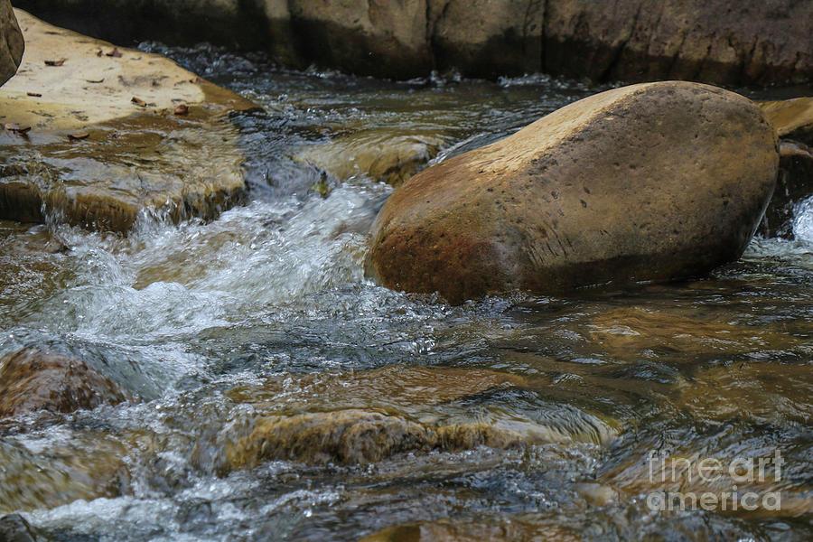 Richland Creek riffle 18 by Garry McMichael
