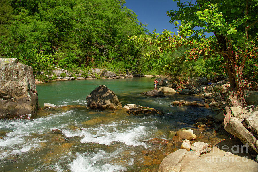Richland Creek Summer by Garry McMichael
