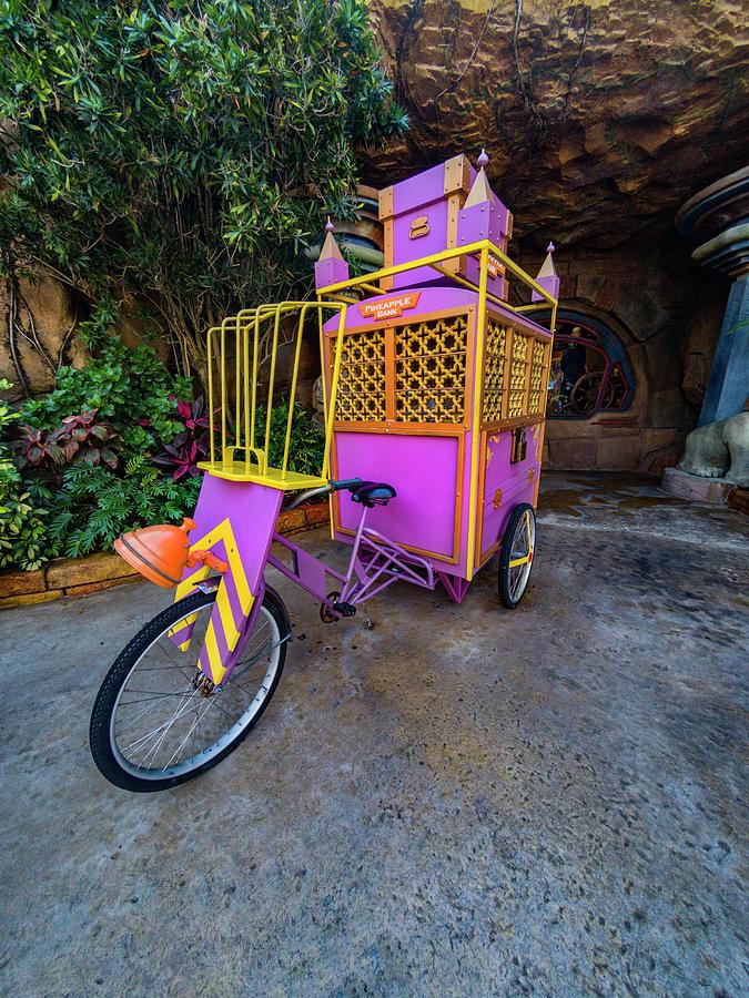 Rickshaw Bicycle GOPR3633 by Carlos Diaz