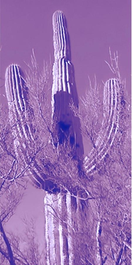 Right Panel Pop Saguaro Triptych by Judy Kennedy