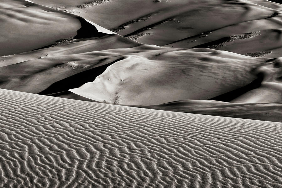 Ripples And Dunes Photograph
