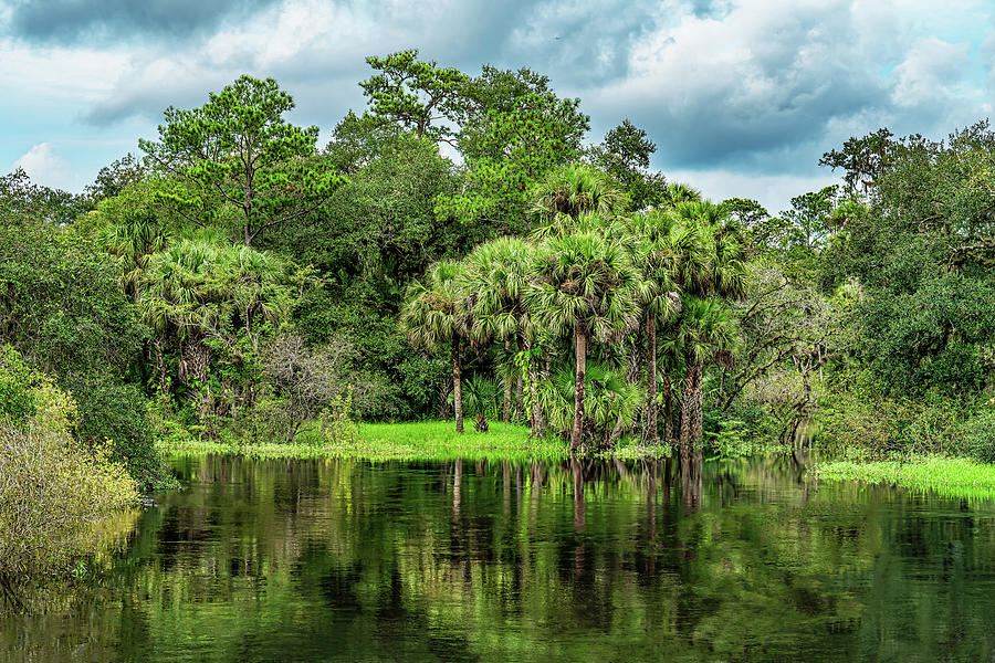 River Photograph - River Bend by Charles LeRette