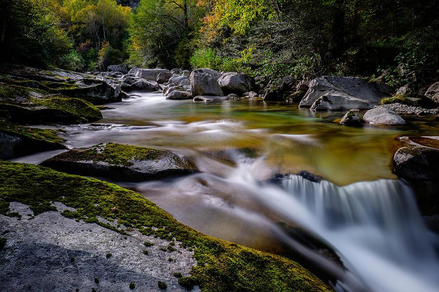 River Flowing Through Rocks In Forest Photograph by Matthias Gaberthüel / EyeEm