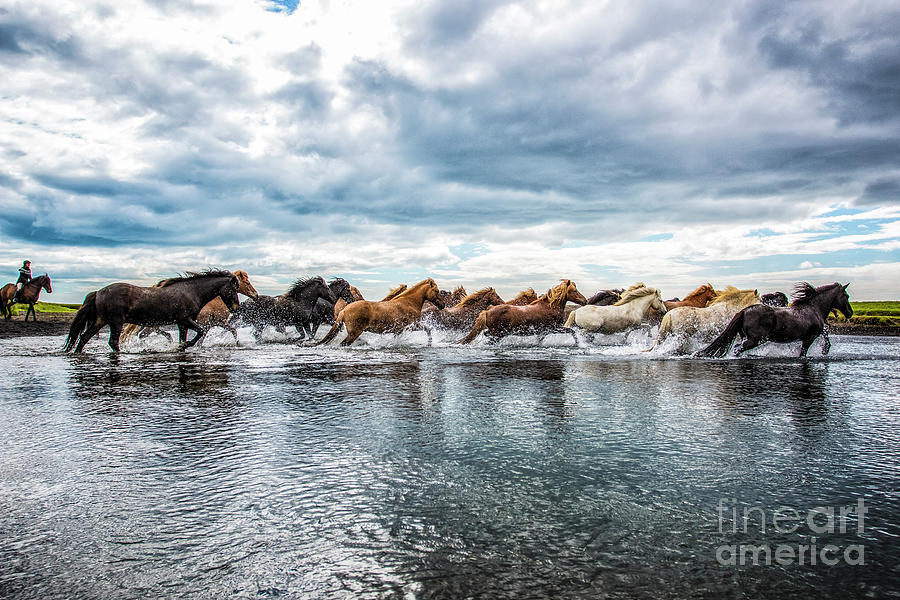 River Run Photograph