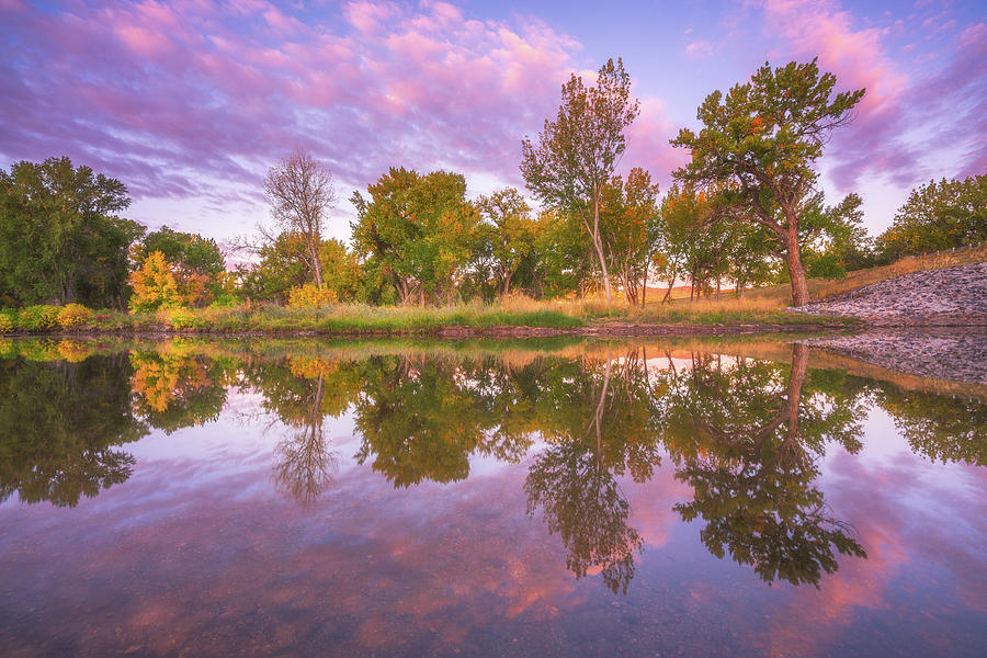 Riverbank Sunrise Photograph