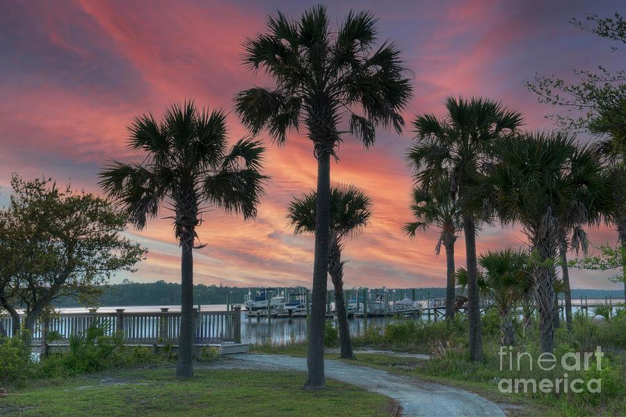 Rivertowne On The Wando - Sunset Palms Photograph