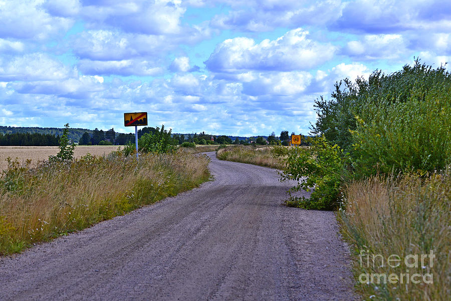 Road Through The Field Photograph