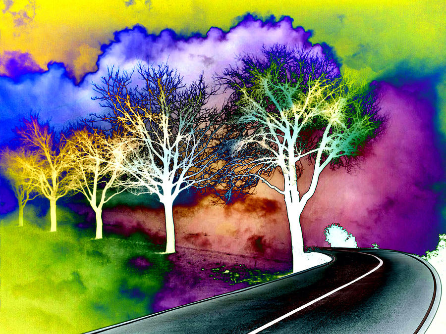 Road Digital Art - Road to Afterlife by Femina Photo Art By Maggie