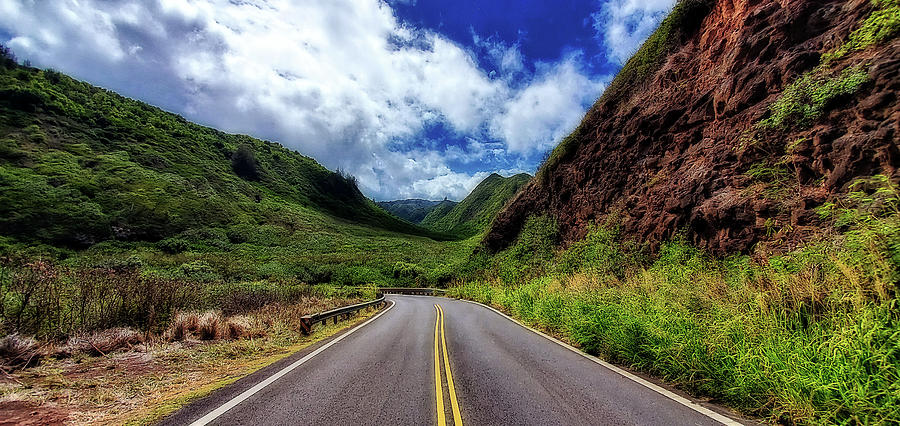 Road to Hana by Eric Wiles