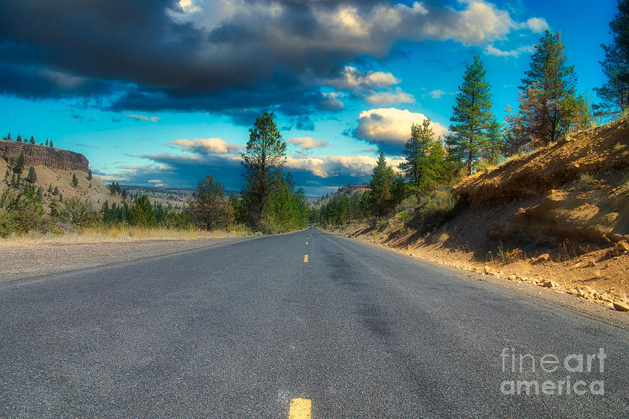 Road to the Cove by Stan Townsend