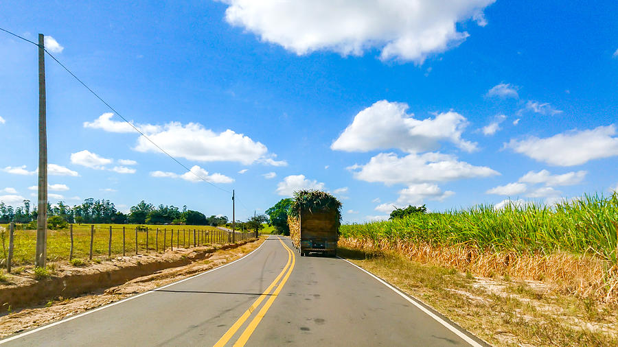 Roads and highways in the rural area of Piracicaba. Photograph by CRMacedonio
