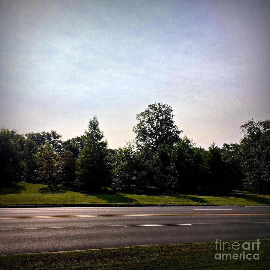 Road Photograph - Roadside Sky by Frank J Casella