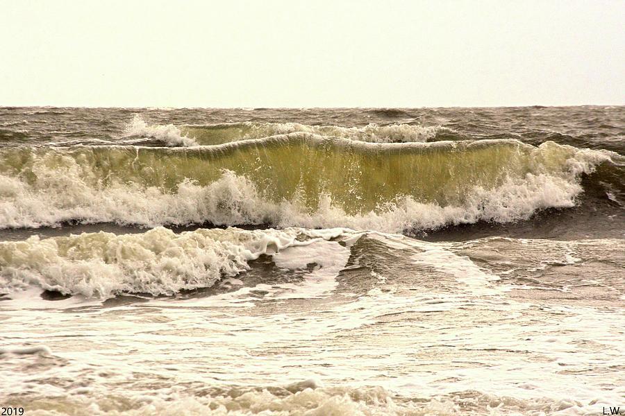 Roaring Ocean by Lisa Wooten