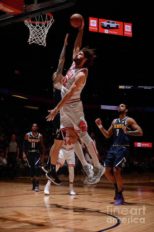 Robin Lopez Photograph by Bart Young