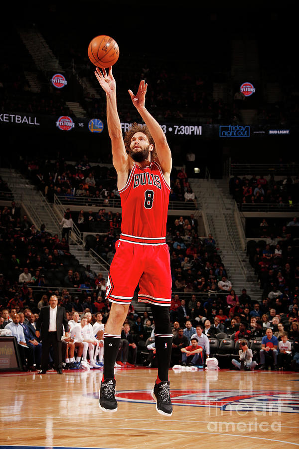 Robin Lopez Photograph by Brian Sevald