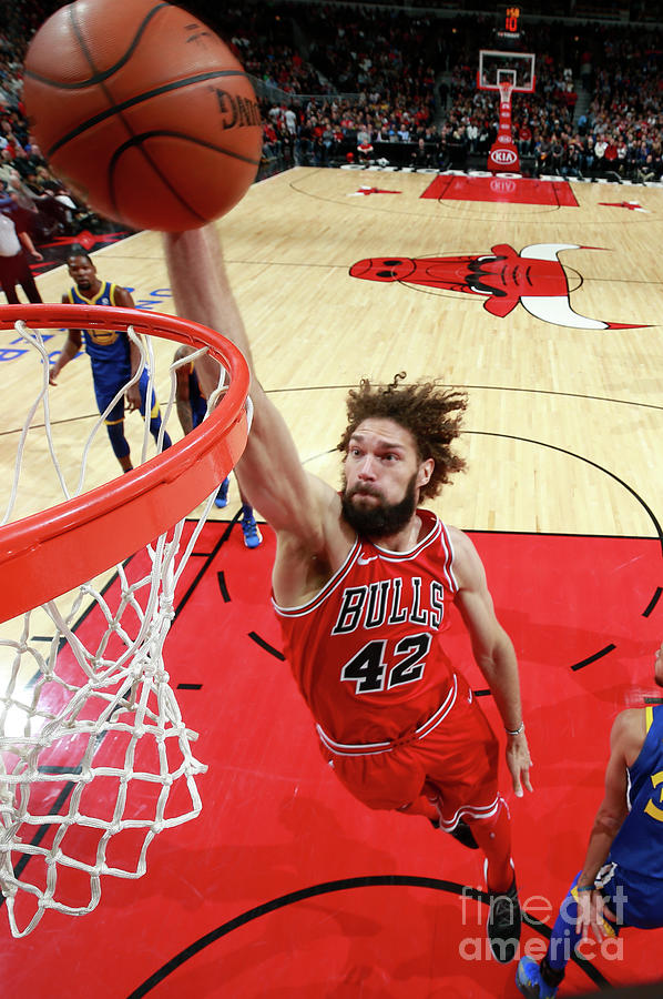 Robin Lopez Photograph by Jeff Haynes
