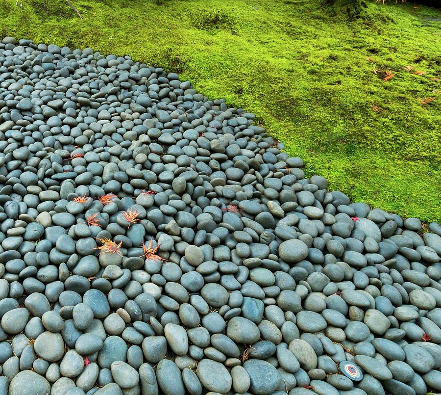 Rock Line by Jean Noren