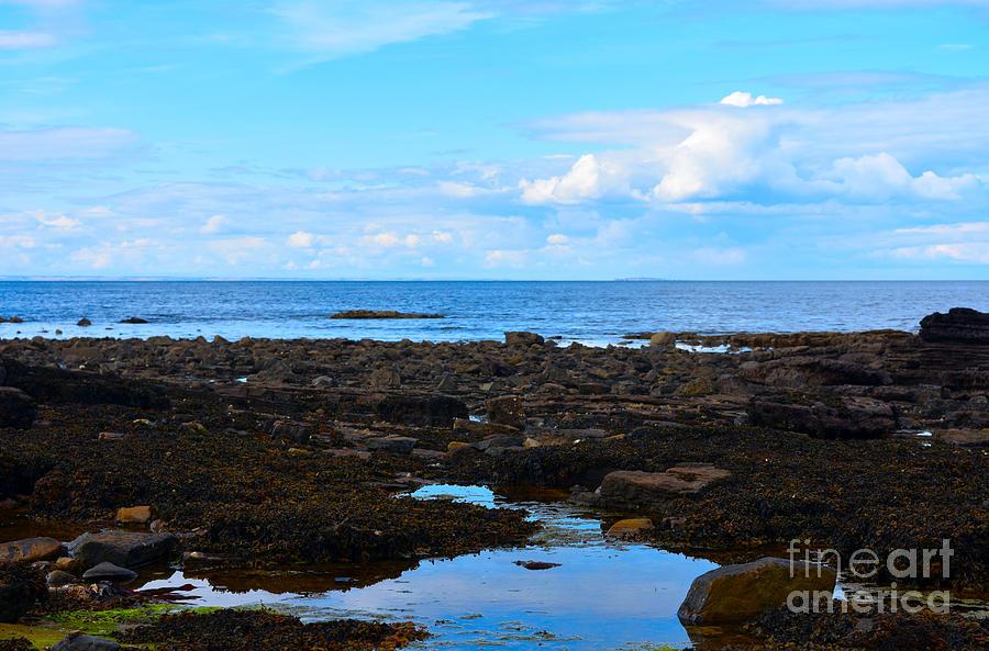 Rockpool - Low Tide - Dunbar by Yvonne Johnstone